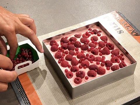 Tarte fruits rouges/exotique - 96