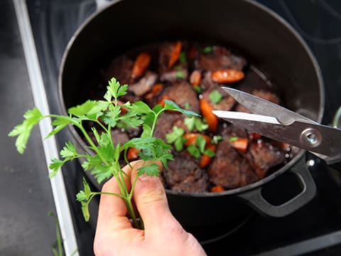 Beef Stew with Carrots - 47