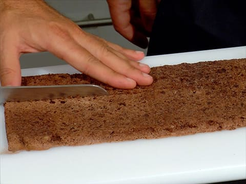 Two-Chocolate & Pear Yule Log - 34