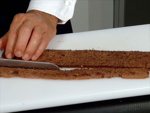 Two-Chocolate & Pear Yule Log - 39