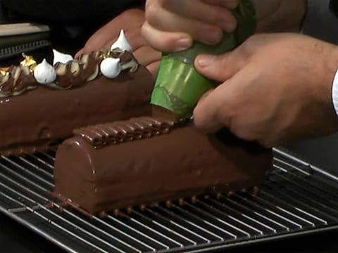 Two-Chocolate & Pear Yule Log - 63