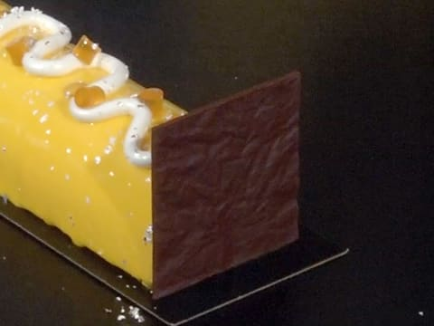Hazelnut & Passion Fruit Yule Log - 118
