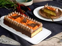 Orange & Chocolate Christmas Yule Log