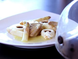 Duck Foie Gras with Granny-Smith, White Asparagus & Pine Aromas