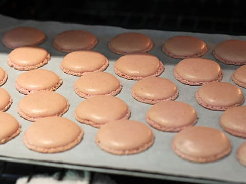 Grapefruit & White Chocolate Macarons - 15