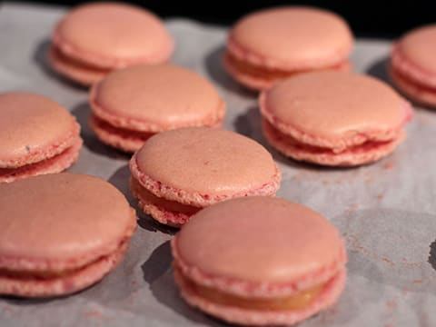 Grapefruit & White Chocolate Macarons - 26