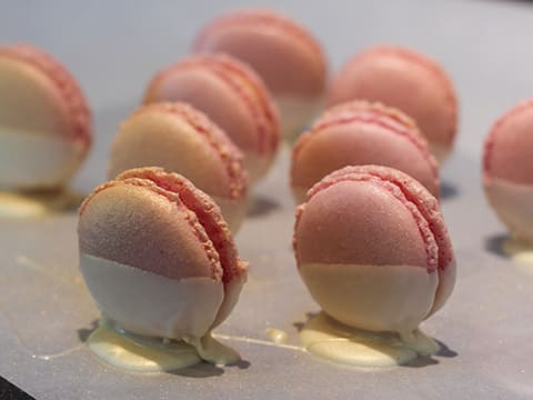 Grapefruit & White Chocolate Macarons - 29