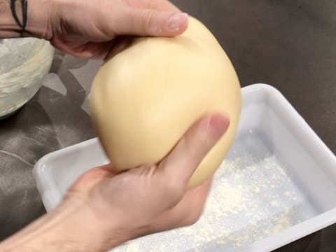 Shape the brioche dough into a ball
