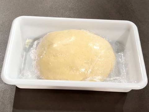 The surface of the brioche dough ball is covered with cling film