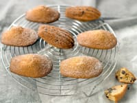 Gluten-Free Vanilla Madeleines with Chocolate Chips