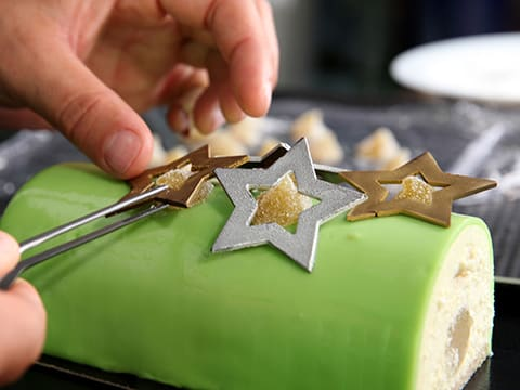 Yule Log with Granny Smith Apple Mousse - 123
