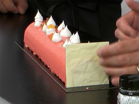 Yule Log with Grapefruit Mousse - 103